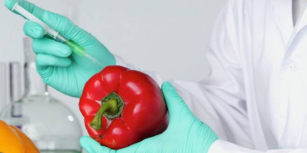 The story behind GMO